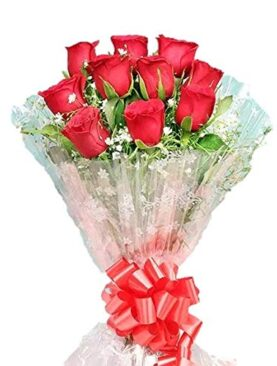Floralbay Valentine's Day Special Fresh Flowers Red Rose Bunch in Cellophane Packing (Bunch of 10)