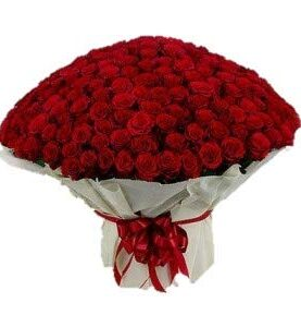 Floralbay Red Roses Bouquet Fresh Flowers in Cellophane Wrapping (Bunch of 100)